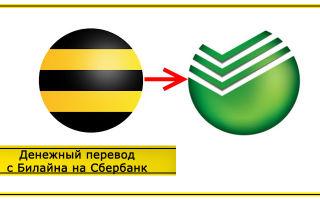 Перевод средств с Билайна на карту Сбербанка: доступные способы