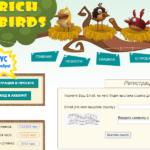 Вывод денег с Рич Бердс на Киви: подробная инструкция