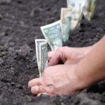 Порядок оплаты земельного налога в интернете – популярные сервисы