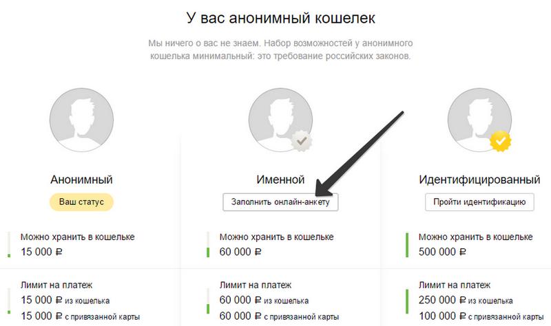 Паспортные данные Яндекс.Деньги