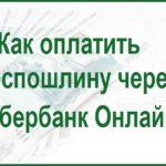 Порядок оплаты госпошлины в суд в Сбербанке Онлайн