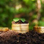 Оплата земельного налога через Сбербанк Онлайн: подробная инструкция