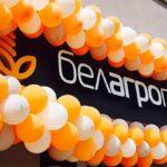 Оплата за интернет через интернет-банкинг Белагропромбанка: пошаговая инструкция